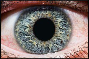 Exemplu de fotografiere a irisului la o claritate bună